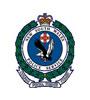 NSW Badge